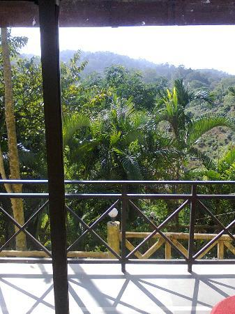 Brahmaputra Jungle Resort: Magnificient view from the verandah of deluxe room 105