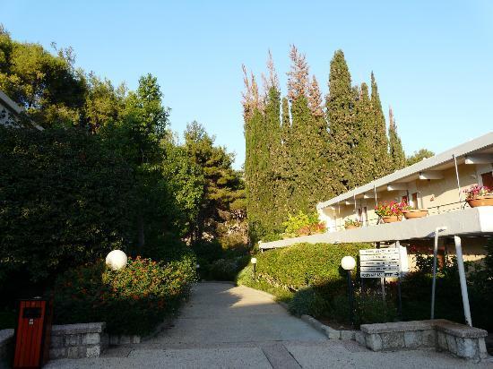 Kfar Giladi Hotel: Vista