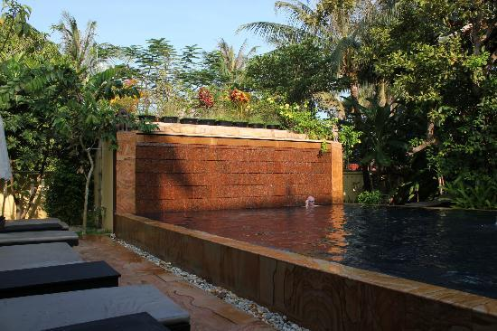 Siddharta Boutique Hotel: Salt water pool