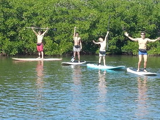 Sarasota Paddleboard Company: fun day visiting from