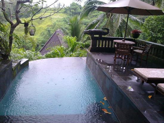 Bidadari Private Villas & Retreat: pool in the villa