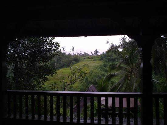 Bidadari Private Villas & Retreat: view from top balcony