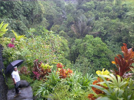 Bidadari Private Villas & Retreat - Ubud: way to the spa