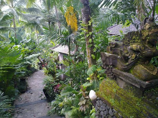 Bidadari Private Villas & Retreat - Ubud: way to our villa