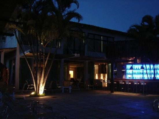 Hotel Mandragora: El bar