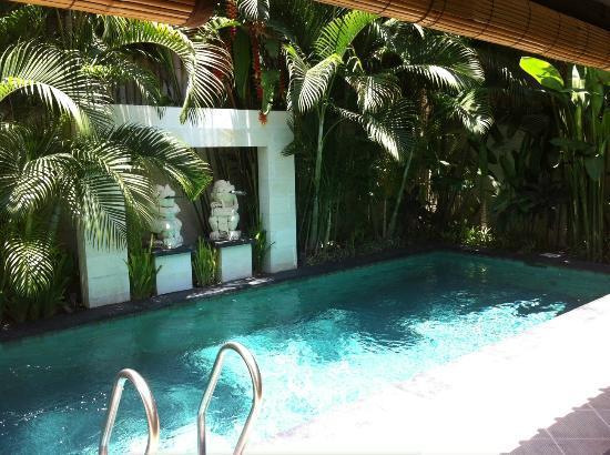 Villa Drupadi: Pool <3