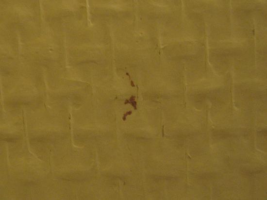 Ibis Nice Centre Gare : Faecal blood on wall.