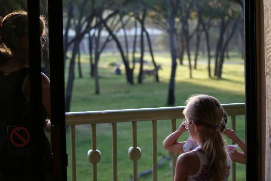 Disney's Animal Kingdom Villas - Kidani Village: Looking out at balcony