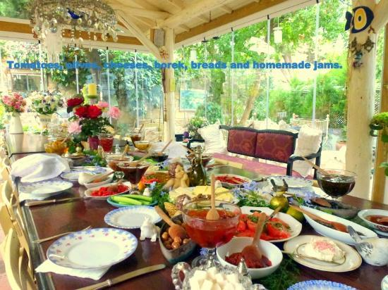 Rengigul Konukevi : Another view of breakfast looking out into garden