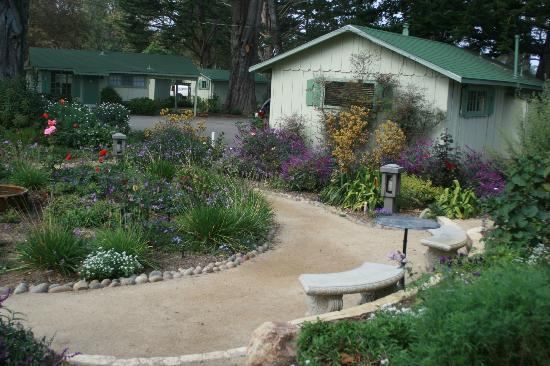 Carmel River Inn: Cottage and garden area