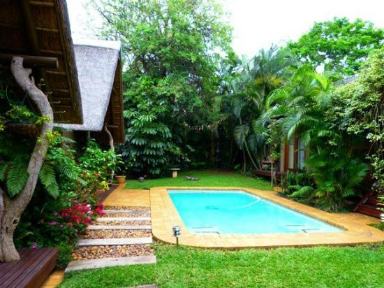 Mhlati Guest Cottages: pool- so nice!