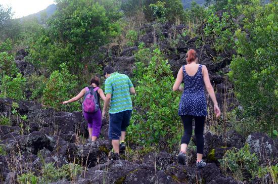 Arenal Adventures: group climbing higher