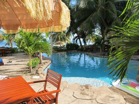 Pelican Reef Villas Resort: Poolside