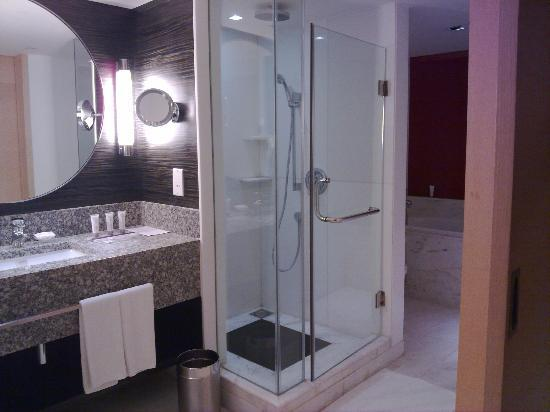 Le Meridien Kochi: washbasin, standup shower and tub
