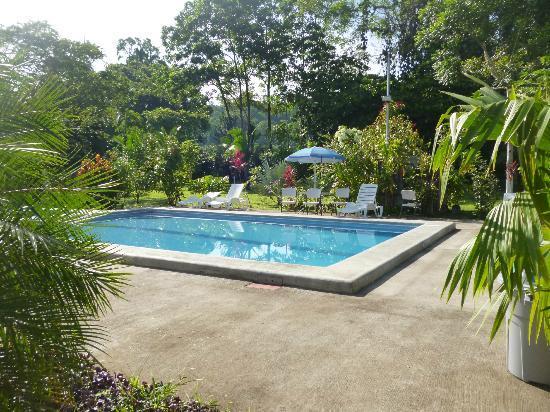 Villas Allen Puerto Viejo: Pool