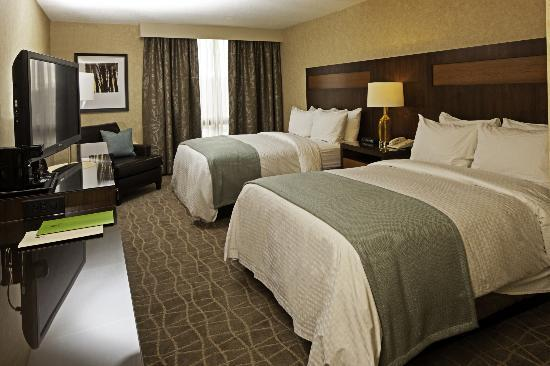 DoubleTree by Hilton Hotel Pittsburgh-Green Tree: New double room