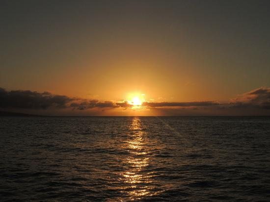 Lahaina Picture Of Maui Princess Sunset Dinner Cruise