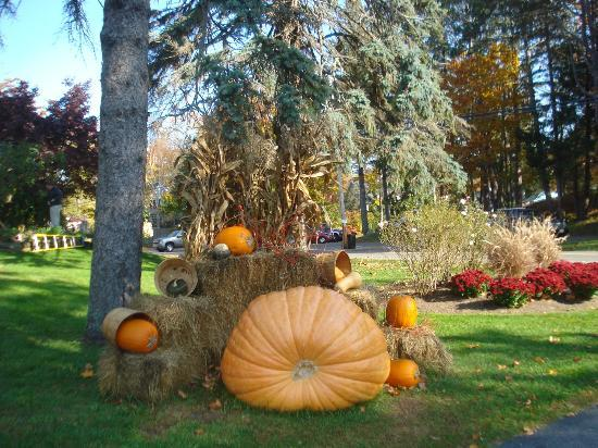 Nonantum Resort: Autumn decorations