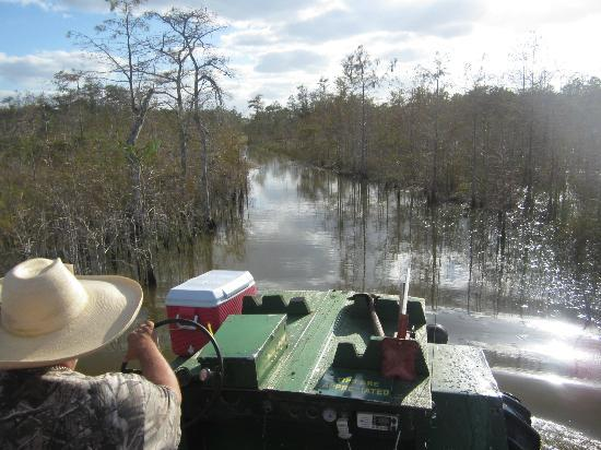 Captain Steve's Swamp Buggy Adventures : Scenic ride