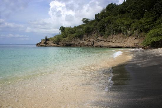 Laluna Hotel: Beach