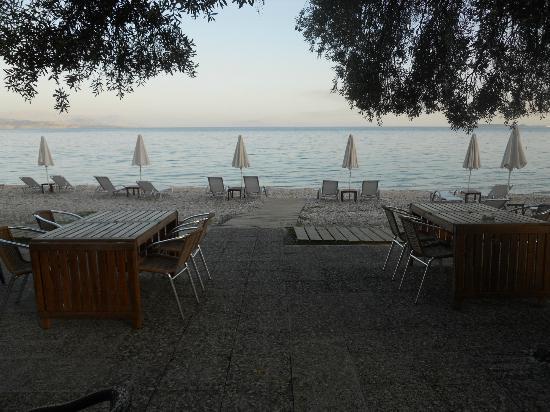 Barbati Beach Apartments : The Shea Shells Restaurant/Snack Bar- Barbati Beach Corfu