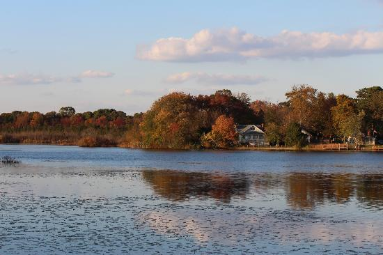 Lake House Restaurant: Lake House view