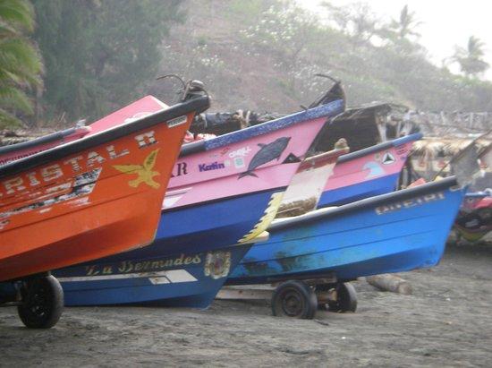 Atlakamani Surfing Resort:                   fishing boats