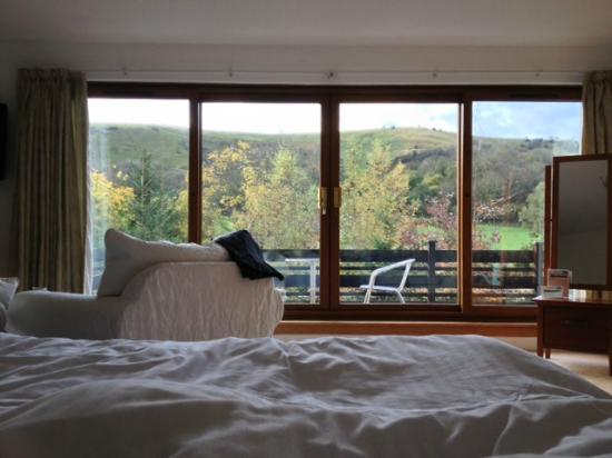 Tovey Lodge: View from pillow, early morn.