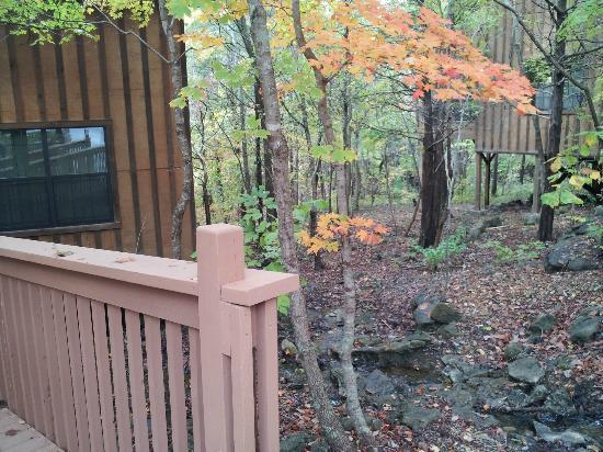 Cabins at Green Mountain: Entry