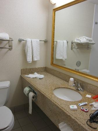La Quinta Inn & Suites Appleton College Avenue: Bathroom