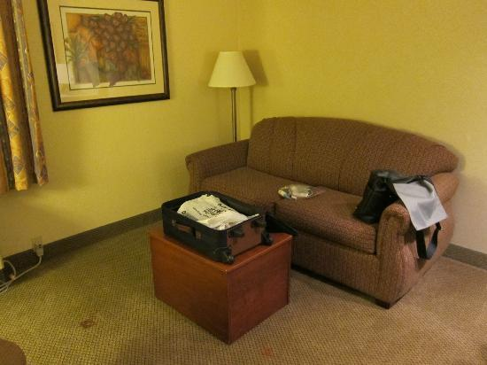 La Quinta Inn & Suites Appleton College Avenue: Living area