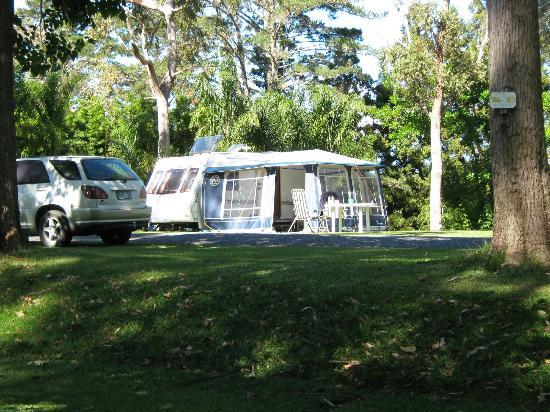 Bay of Islands Holiday park: The camp ground