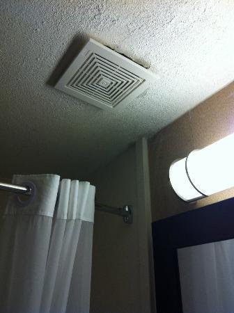Hudson River Hotel: vent in bathroom-- source of water leak
