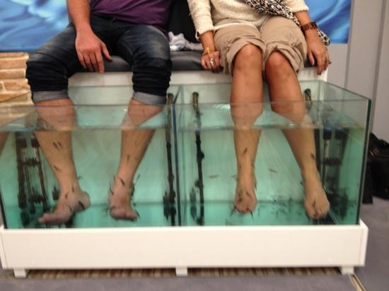 Athens Doctor Fish - Foot Therapy & Day Spa: dr fish with patients