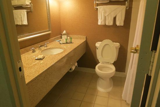 Hilton Atlanta Northeast: Bathroom