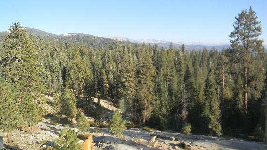 Montecito Sequoia Lodge & Summer Family Camp: View from the room