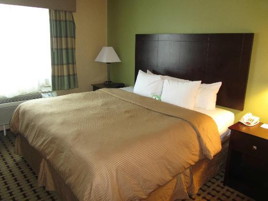Clarion Inn & Suites Atlantic City North : King Bed