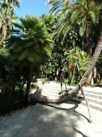 Alfabia - giochi dacqua - Picture of Jardins de Alfabia, Bunyola - TripA...