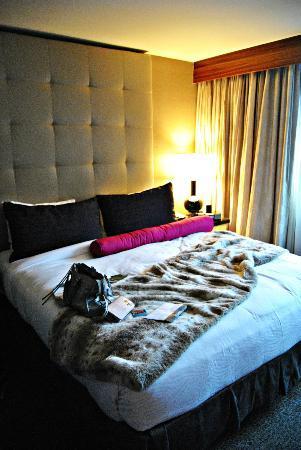 Kimpton Hotel Palomar Washington DC: La mia stanza
