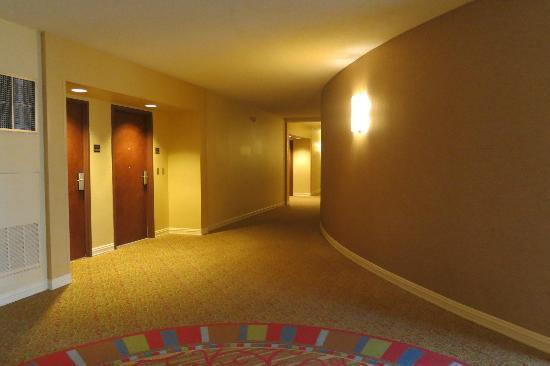 Hilton Houston Post Oak: Hallway