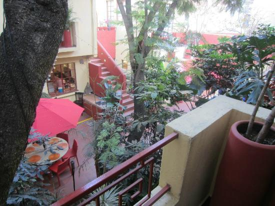 The Red Tree House: View from the Oaxaca suite
