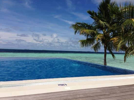 Vilamendhoo Island Resort & Spa: infinity pool