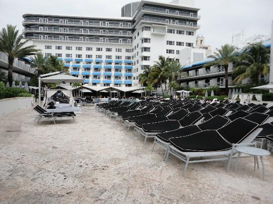 The Ritz-Carlton, South Beach: Lots of chairs!
