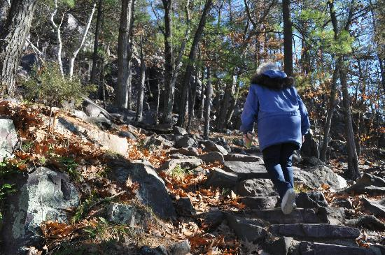 """The """"Stairs"""" up Balanced Rock trail"""