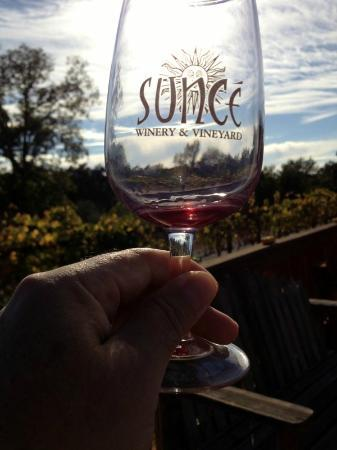 Sunce Winery: Enjoying wine at the bocce court