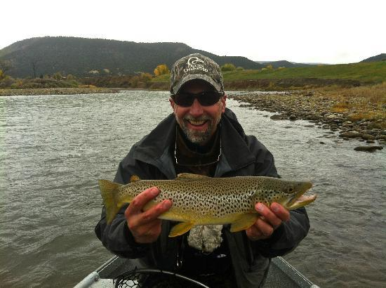 Nice brown - Picture of Cutthroat Anglers, Silverthorne - TripAdvisor