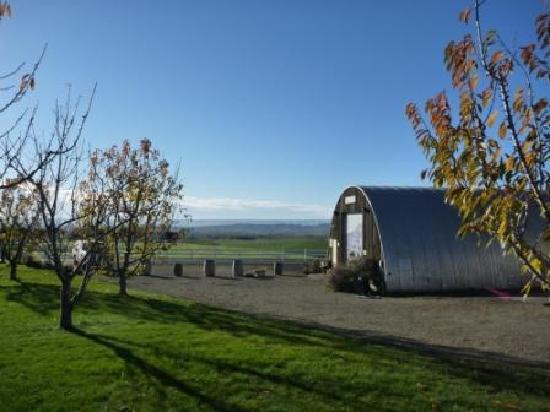 Sunnyside, WA: Steppe Cellars - Tasting Room and Picnic Area with a view