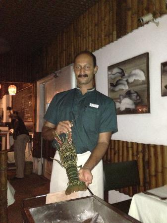 FortCochin,Seafood Restaurant,Casino hotel: Thomas