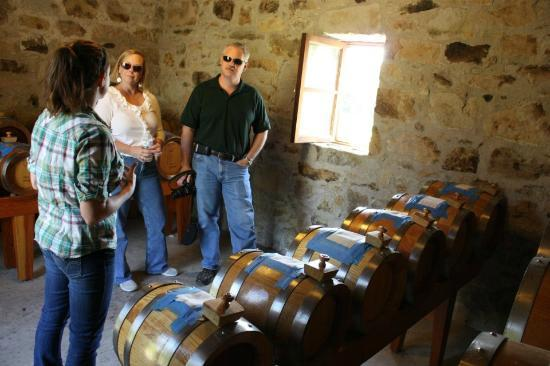 Napa Valley Wine Excursions Tours: Salvestrin Winery