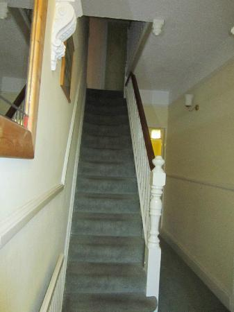 Victoria Bed and Breakfast: Direct view of stairs to 1st floor rooms from the front door